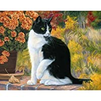 LovetheFamily 油絵 数字キット塗り絵 手塗り DIY絵 デジタル油絵 数字油絵 黒白猫 40x50cm ホーム オフィス装飾