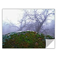ArtWall ArtApeelz 'Domeland Winter' Removable Graphic Wall Art by Dean Uhlinger, 18 by 24-Inch [並行輸入品]