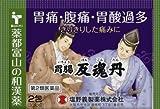 【第2類医薬品】胃腸反魂丹 2包