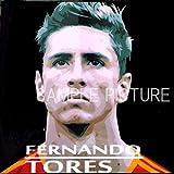 フェルナンド・トーレス スペイン代表 海外サッカーグラフィックアートパネル 木製 壁掛け ポスター インテリア