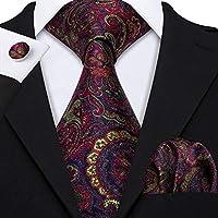 Barry.Wang Men Paisley Necktie Classic Silk Flower with Pocket Square Cufflink Tie Clip Set