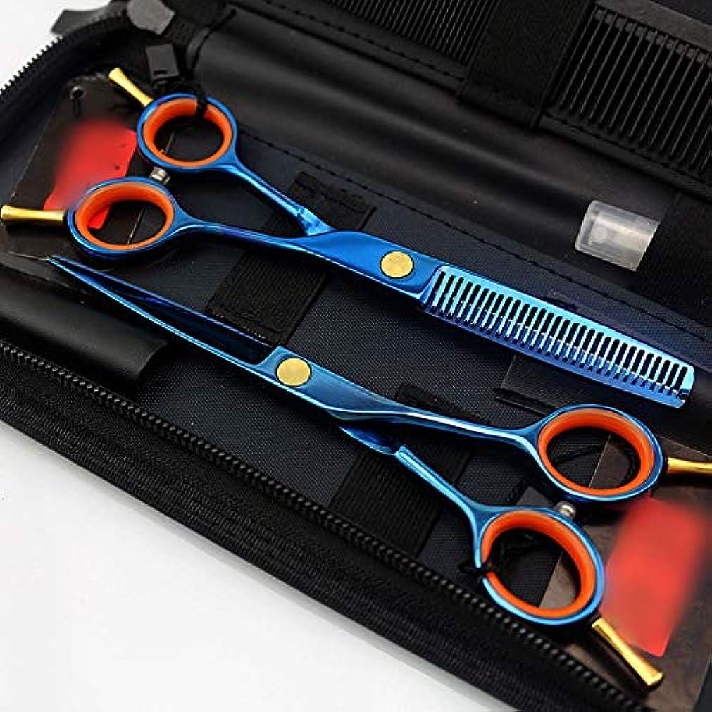 バランス保証金哲学5.5インチブルーメッキダブルテール理髪はさみセット、美容院プロのヘアカットセット ヘアケア (色 : 青)