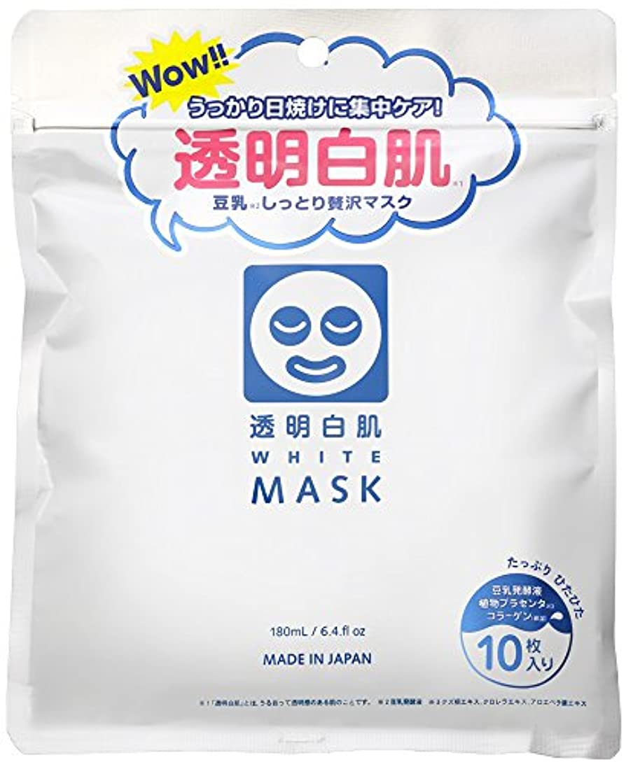 職業住むたとえ透明白肌 ホワイトマスクN 10枚入