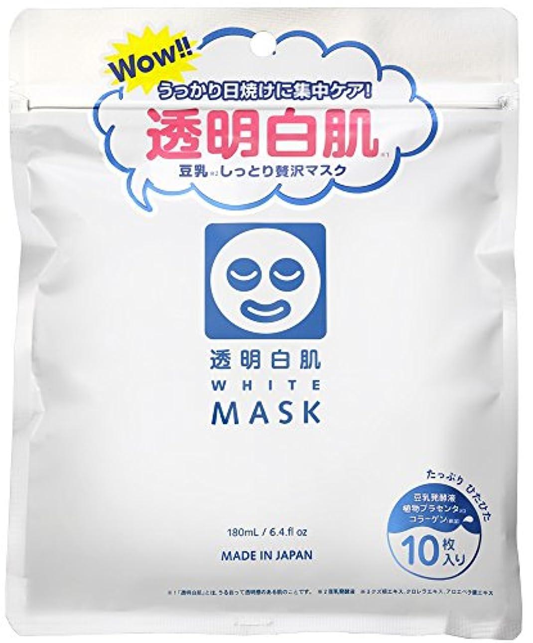 アラート締める手荷物透明白肌 ホワイトマスクN 10枚入