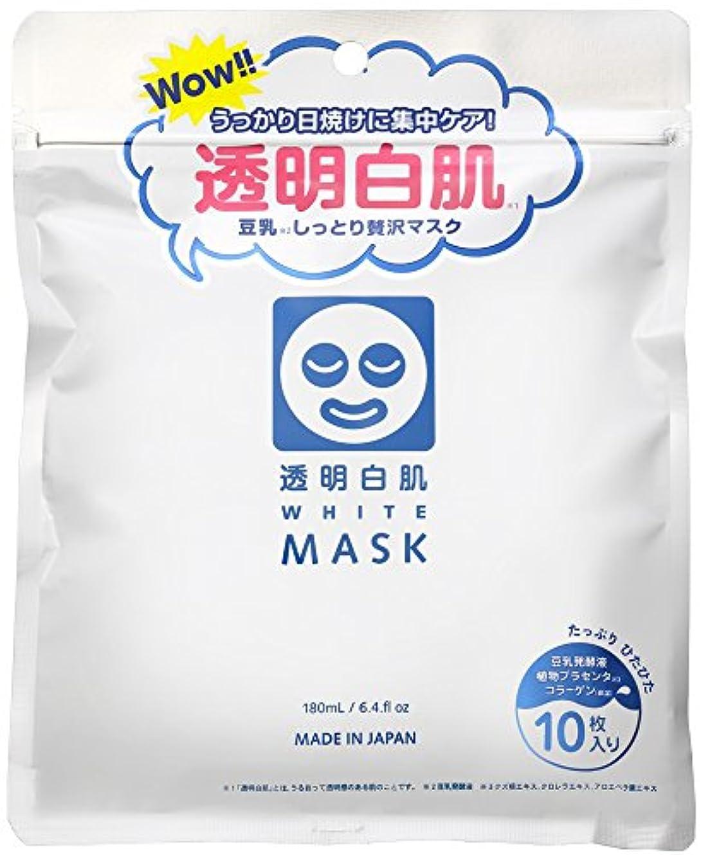 腐敗したきゅうり議会透明白肌 ホワイトマスクN 10枚入