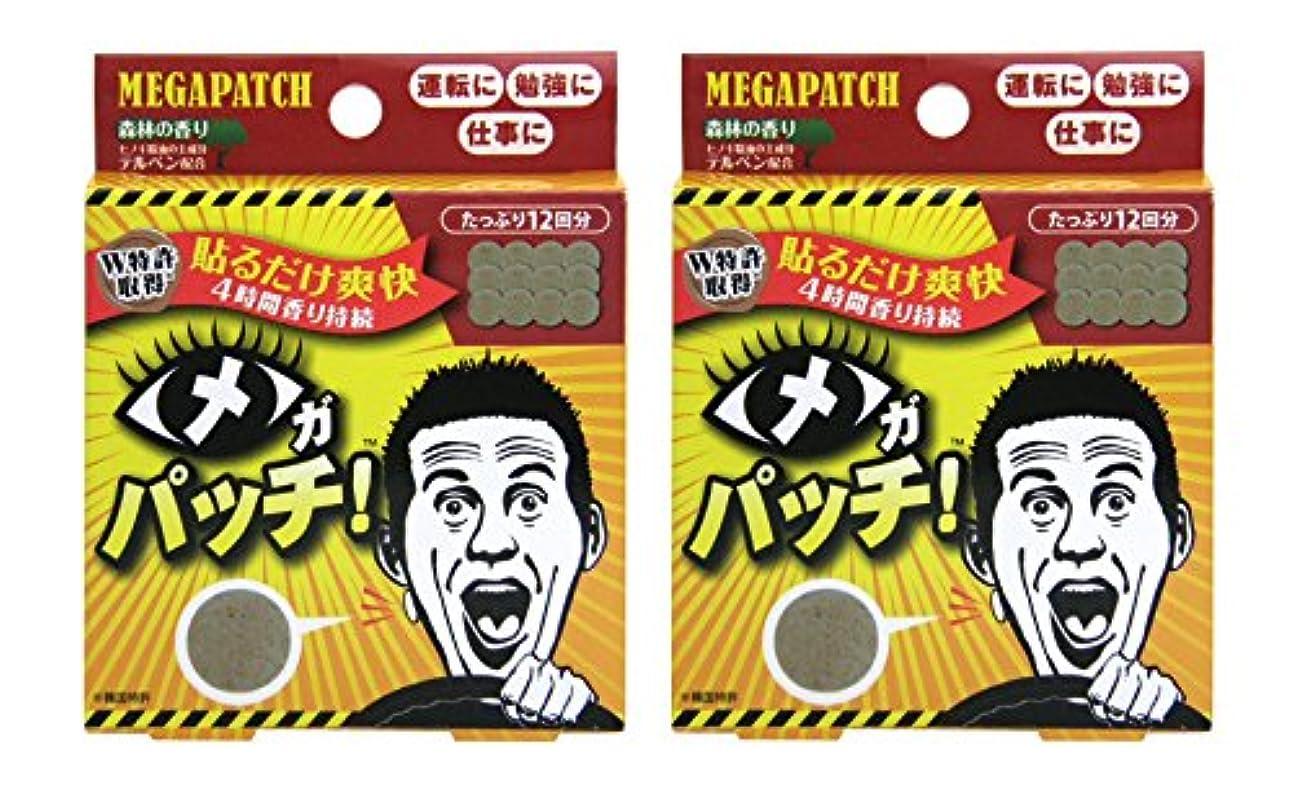 ブースト安全性相対的メガパッチ 12枚セット×2個セット