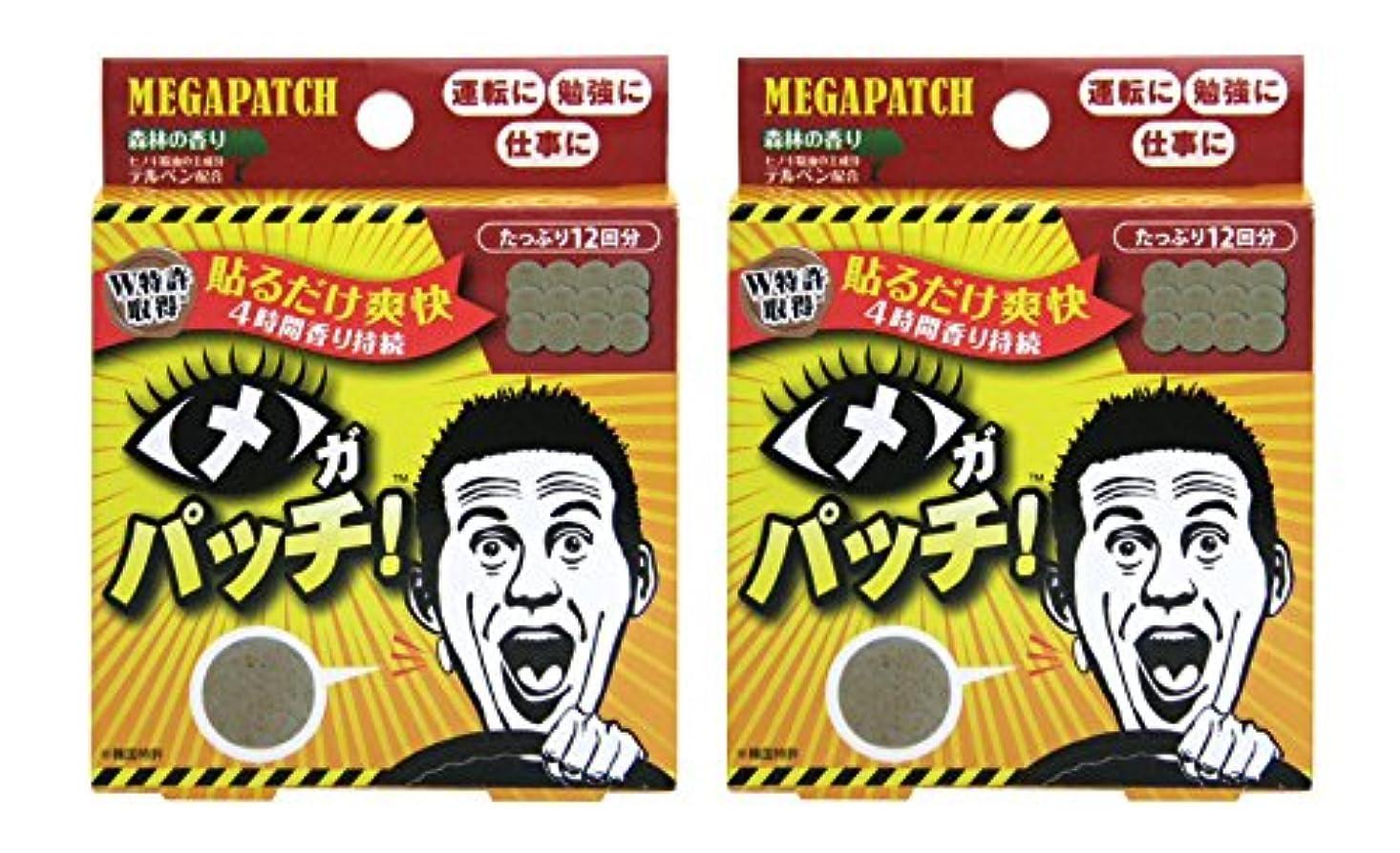 マカダム障害そのメガパッチ 12枚セット×2個セット
