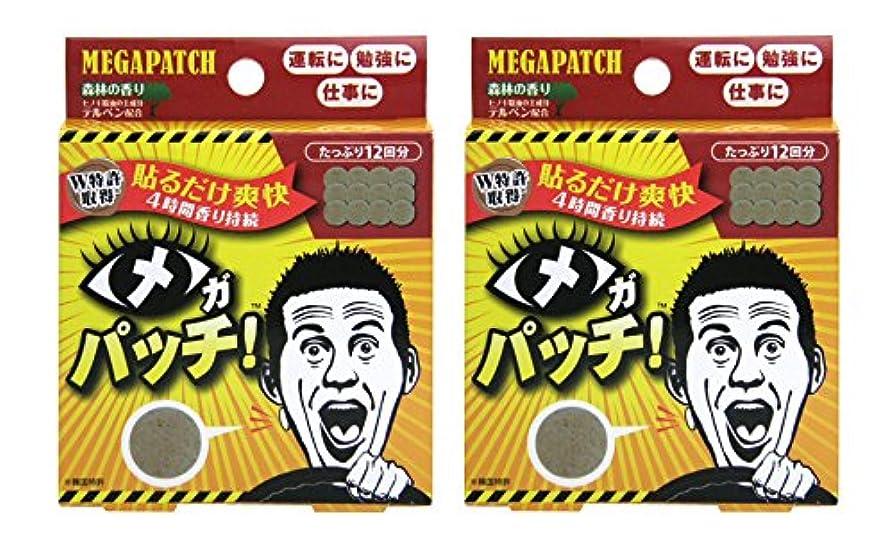 不快不当洗練されたメガパッチ 12枚セット×2個セット
