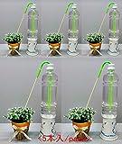 植木鉢用自動給水器 ミドリの水番 (5本入り)