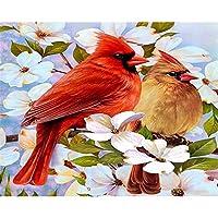 LovetheFamily カラフルなカップルの鳥 数字油絵 数字キット塗り絵 手塗り DIY絵 デジタル油絵 ホーム オフィス装飾 40x50cm (フレームレス)