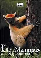 Life of Mammals 3 [DVD] [Import]