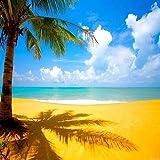 トロピカルビーチとココナッツ木10' x 10'デジタル印刷写真バックドロップ背景ka144kaシリーズ