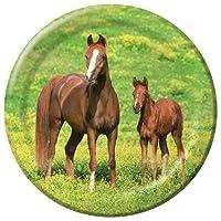 Wild Horses Dinner Plates 野生の馬ディナープレート♪ハロウィン♪クリスマス♪