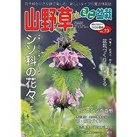 山野草とミニ盆栽 2009年 05月号 [雑誌]