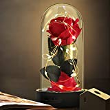 Beauty and The Beast Rose,Enchanted Red Silk Rose Flower that Lasts Forever with LED Fairy String Lights,Fallen Petals and ABS Base in A Glass Dome,Best Gift for Her
