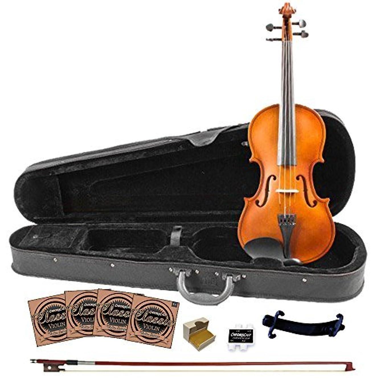 ドナウ川乱雑な受粉者Rise by Sawtooth ST-RISE-VFLAME Beginner'S Violin Full Size [並行輸入品]