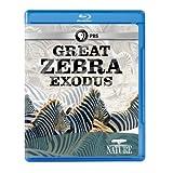 Nature: Great Zebra Exodus [Blu-ray] [Import]