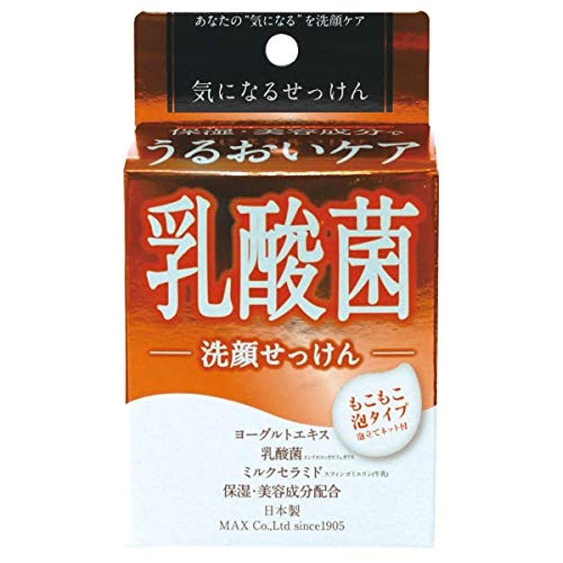 黒くぼみデクリメント気になる洗顔石けん 乳酸菌