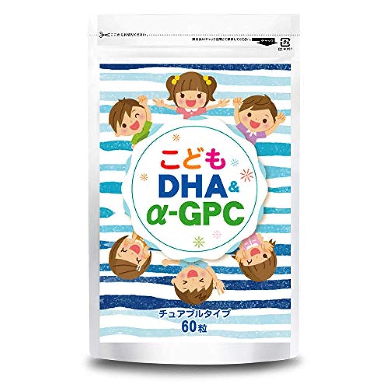フィットネス話す正確さこども DHA&α-GPC DHA EPA α-GPC ホスファチジルセリン 配合 【集中?学習特化型サプリメント】 60粒約30日分