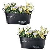(セット品:2個セット) クール ナチュラルブリキポット (植木鉢) オーバル M (連鉢用/4号×2) ブラック COOL TIN POT ガーデン用品