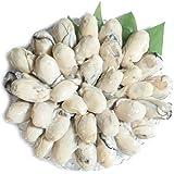 牡蠣 冷凍 かき むき身 広島県産 大サイズ (1kg 30-40個+)