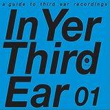 In Yer Third Ear 01