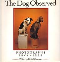 Dog Observed