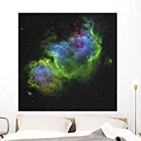 Soul Nebula Wall Mural by Wallmonkeys Peel and Stick Graphic (48 in H x 48 in W) WM95854 [並行輸入品]
