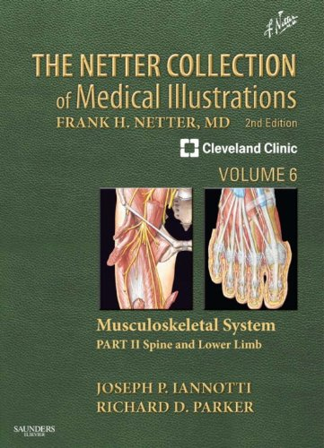 Download The Netter Collection of Medical Illustrations: Musculoskeletal System, Volume 6, Part II - Spine and Lower Limb E-Book (Netter Green Book Collection) (English Edition) B00C5T4REY