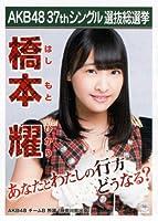AKB48 公式生写真 37thシングル 選抜総選挙 ラブラドール・レトリバー 劇場盤 【橋本耀】