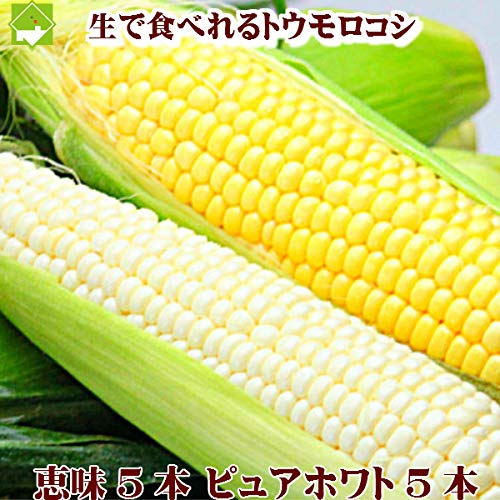 とうもろこし 生で食べれる!北海道ふらの産 ピュアホワイト・恵味 10本セット