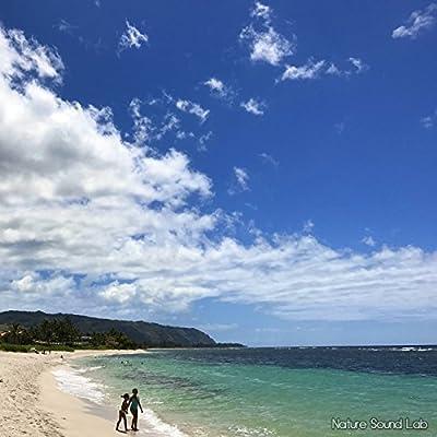 ハワイ Aweoweoビーチの波音 〜ビーチサイドで寝そべりながら〜