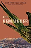The Remainder (English Edition)