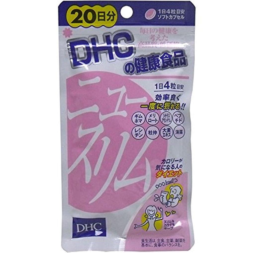 電池うめきポーチ食事系 サプリメント スリムなカラダをキープ 便利 DHC ニュースリム ダイエット 20日分 80粒【2個セット】