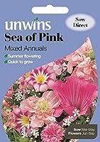 HIGH発芽SEEDSだけでなくPLANTS:ピンクミックス年報のUnwins海