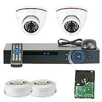 GW Security Inc VD2CHC7 4 Channel HDCVI DVR Security System 2 x 1/2.9 HDCVI Color IR CCTV Security Camera [並行輸入品]