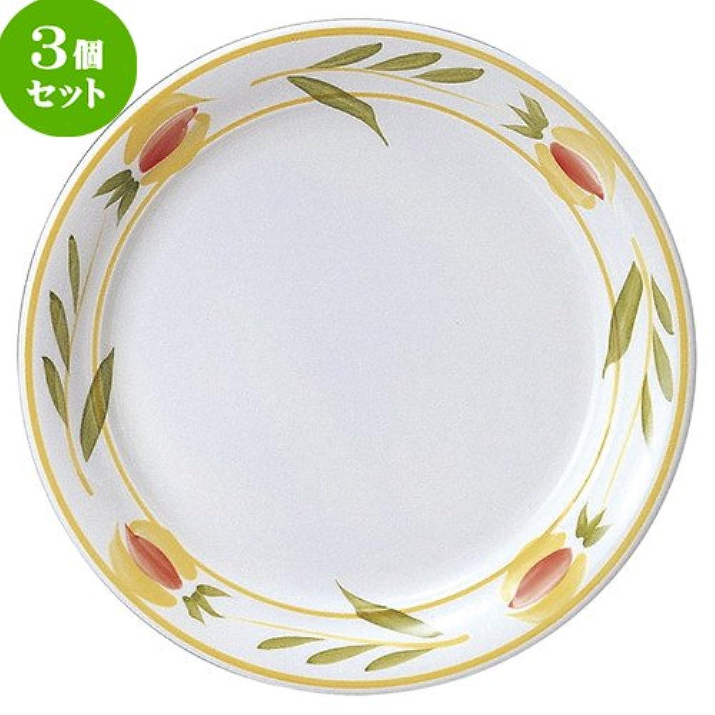 3個セット テンポ 27.5cm ディナー皿 [ D 27.5 x H 3.2cm ] 【 大皿 】 【 飲食店 レストラン ホテル カフェ 洋食器 業務用 】
