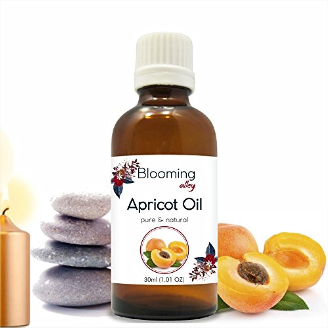 中傷ジャングル純粋なApricot Carrier Oil Prunus armeniaca 30ML
