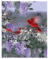 FFYYJJLEI Diyデジタル油絵赤黒オウム壁番号による抽象写真の装飾リビングルーム手塗りの家の装飾フレーム