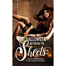 Halloween Between the Sheets: A Reverse Harem Anthology of Spooky Scenes that Get to the Point