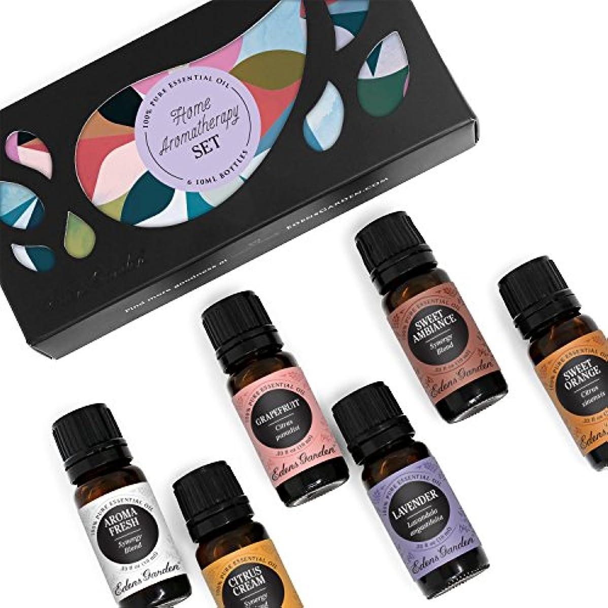 栄光スラッシュ売るHOME Aroma Set 100% Pure Therapeutic Grade Essential Oil Kit- 6/10 ml of Grapefruit, Hope, Lavender (Spike), Peppermint...
