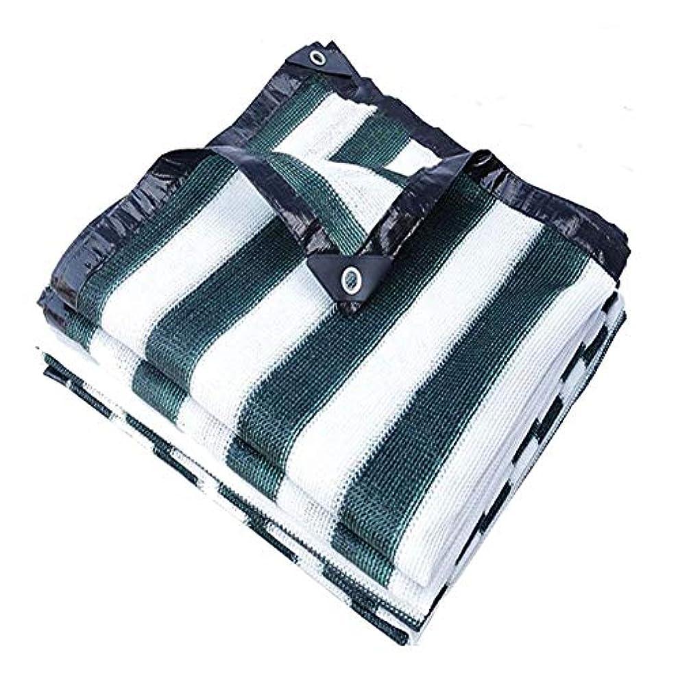 メンタル任命する専門化する12J-weihuiwangluo 防水布防水日よけネット日焼け止めネット断熱ネット中庭バルコニートップ植物日焼け止めネットカラーストライプ (Color : Green+white stripes, サイズ : 2x3M)