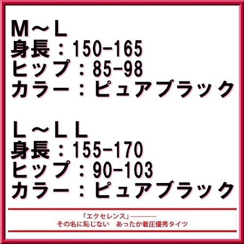 カネボウ エクセレンス 110デニール タイツ 限定品 (M~L)