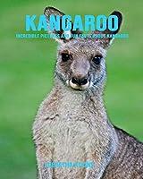 Kangaroo: Incredible Pictures and Fun Facts about Kangaroo