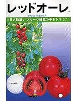 レッドオーレ カネコの中玉トマト種です