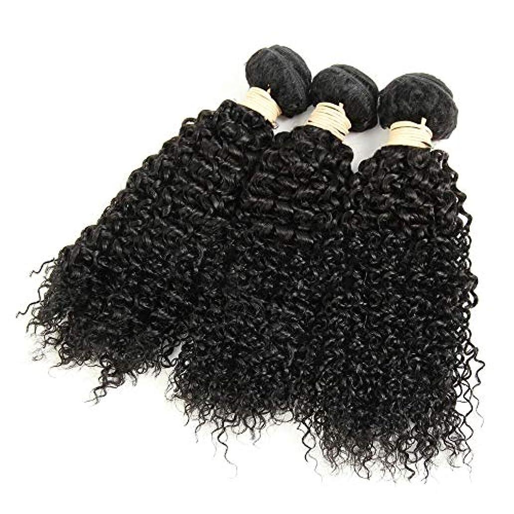 ねばねば艶ロンドンWASAIO 100グラム)1バンドル、1バンドル、変なカーリーヘア本物の人間の拡張クリップのシームレスなバンドルブラジルCrypticalウェーブ未精製の織り方(8「-28」 (色 : 黒, サイズ : 10 inch)