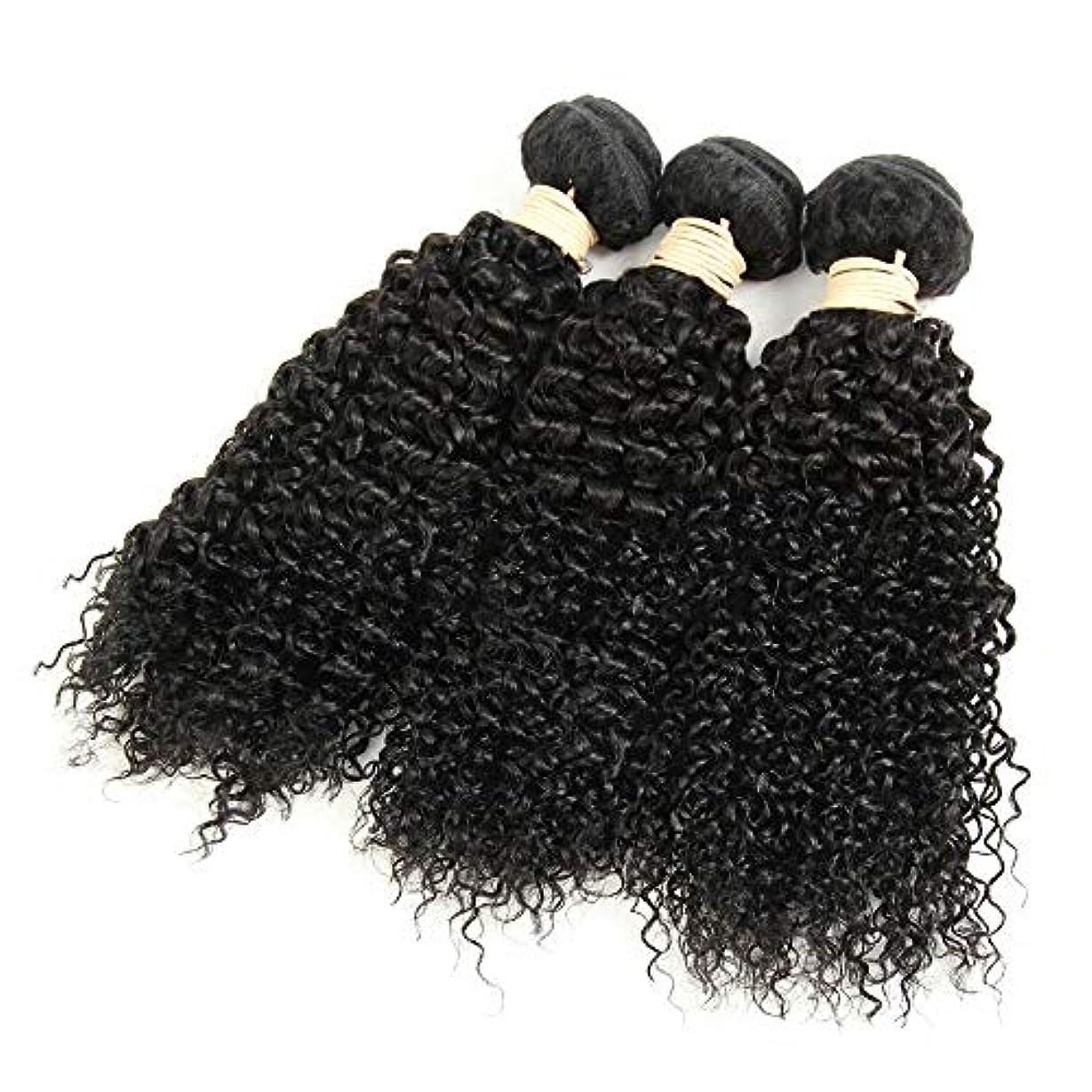 悪い集まる支配するHOHYLLYA 1バンドル変態巻き毛100%本物の人間の髪の毛の束ブラジルのディープウェーブの毛未処理の髪を編む(8
