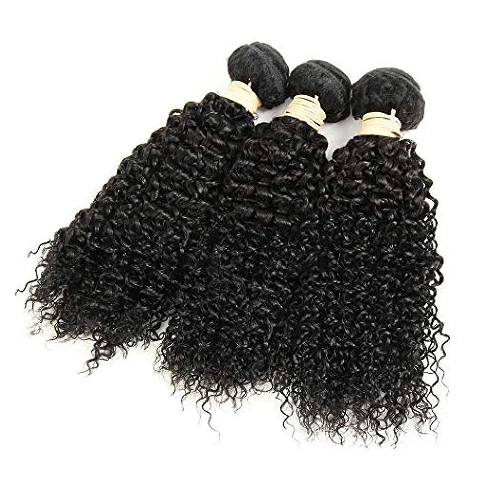 同化する市の花骨HOHYLLYA 1バンドル変態巻き毛100%本物の人間の髪の毛の束ブラジルのディープウェーブの毛未処理の髪を編む(8