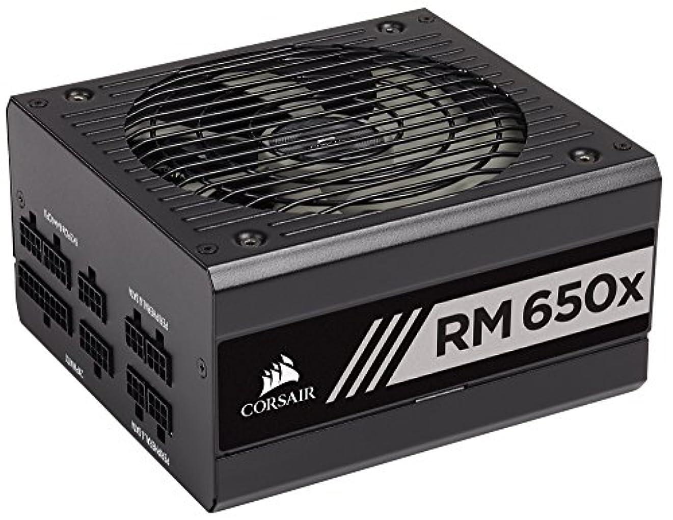プレゼンテーション三角ツーリストCorsair RM650x -2018-650W PC電源ユニット [80PLUS GOLD] PS805 CP-9020178-JP