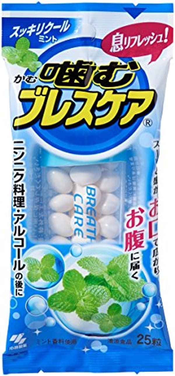 解決する寂しい歯噛むブレスケア スッキリクールミント 25粒